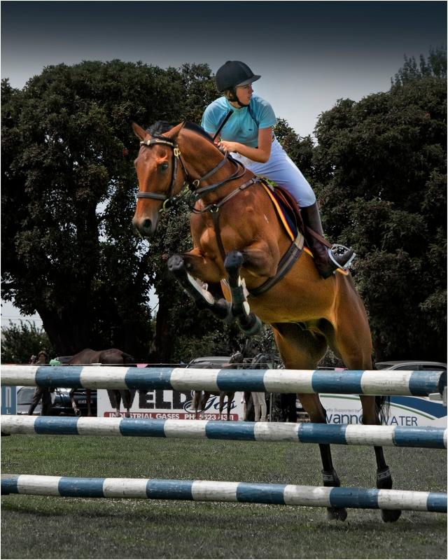Horse-Jump-Tyrendarra-Show-V0394-16x20 copy