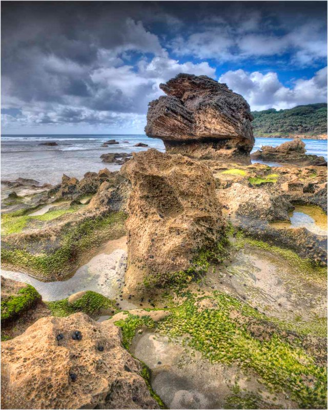 Middle-Beach-Rock-Formations-LHI0141-16x20 copy