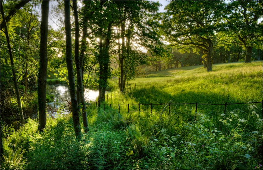 Grange-Heath-Backlighting-E0572-11x17 copy