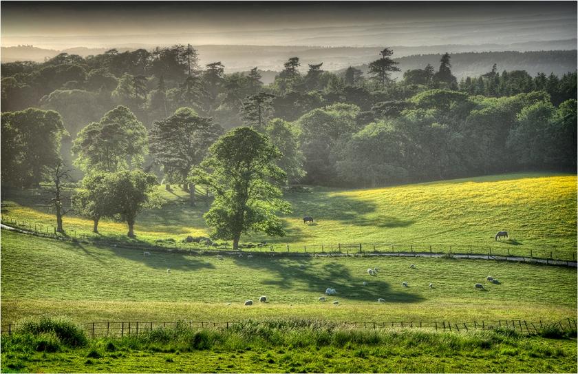 Grange-Heath-Valley-E0569-11x17 copy