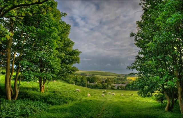 View-to-Kimmeridge-Dorset-E0559-11x17 copy