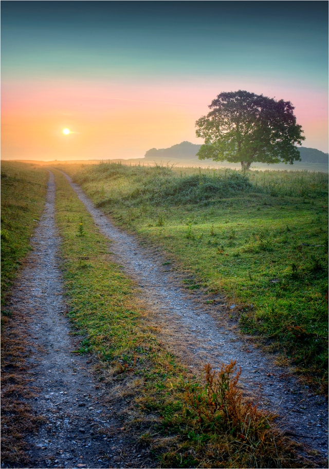 Dawn-Badbury-Rings-Dorset-E0624-14x20 copy