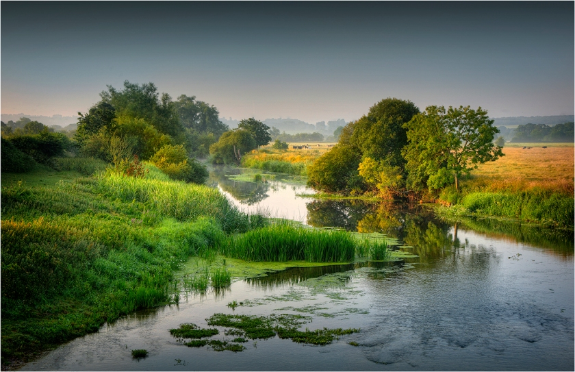 Stour-river-summer's-Morning-Dorset-E0630-11x17 copy