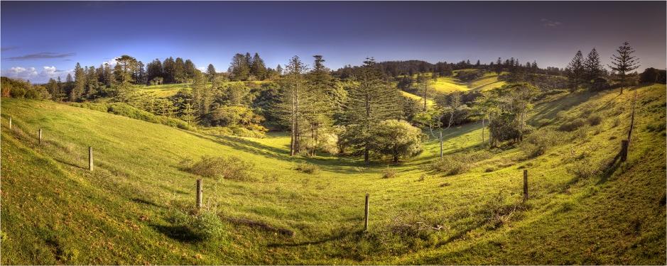 Country-Pastures-NI0288-12x30 copy