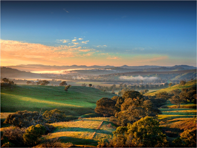 Misty-Morning-near-Jugiong