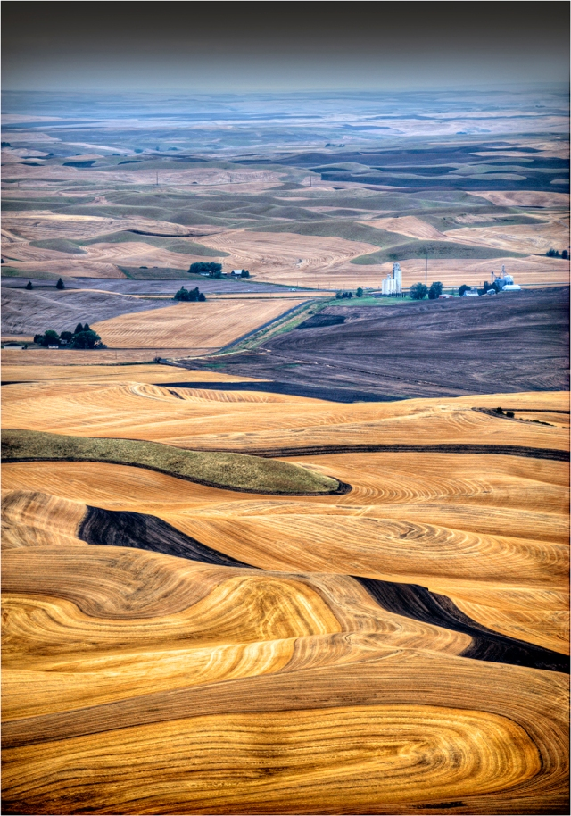 The-Palouse-WSH024-14x20
