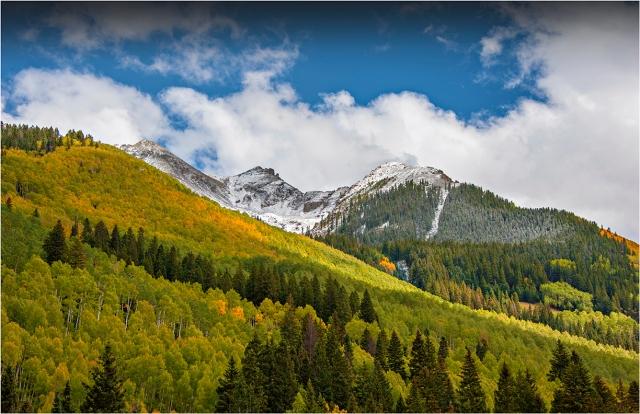 Aspens-Telluride-Autumn-CLD082-11x17 copy