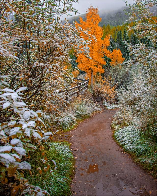 Telluride-Pathway-CLD0106-16x20 copy