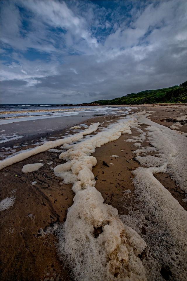 Grassy-Bay-tidal-Foam-KI0601-16x24