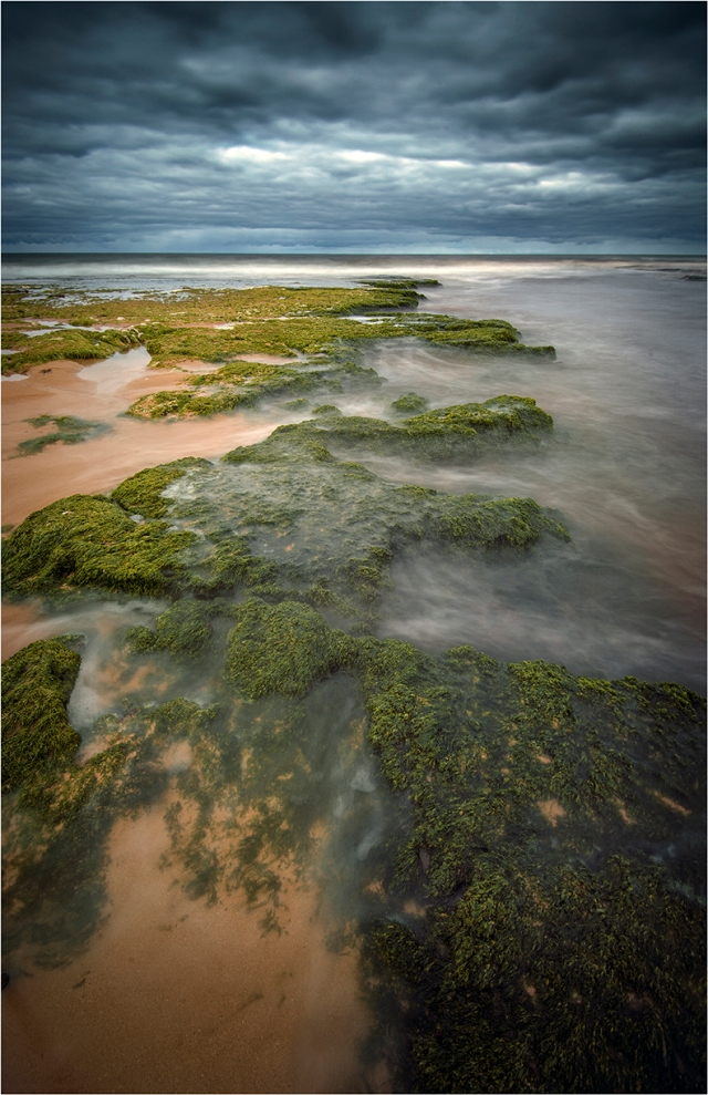Tidal-Flow-Hopkins-River-Warrnambool-VIC0637-11x17 copy