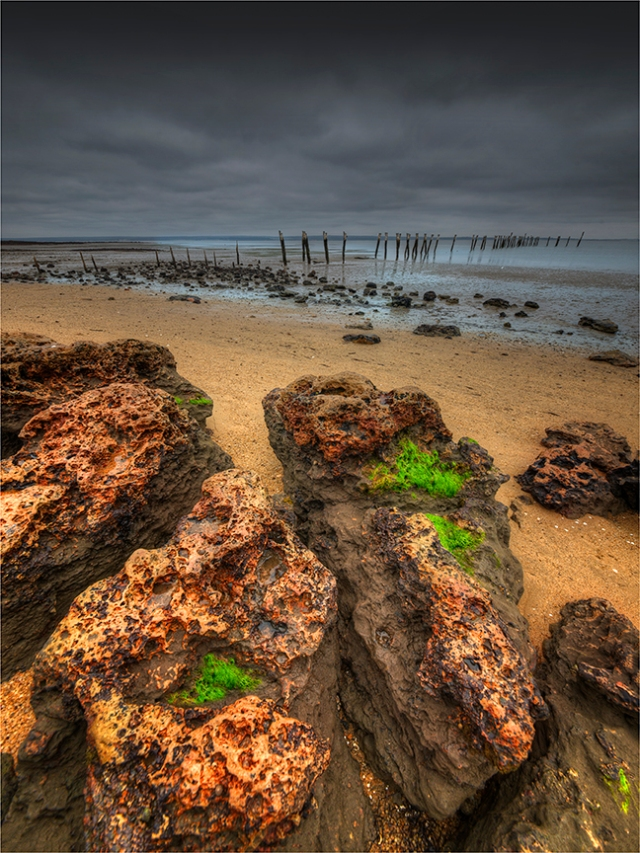 Tenby-Point-Westernport-Bay-VIC0654-18x24