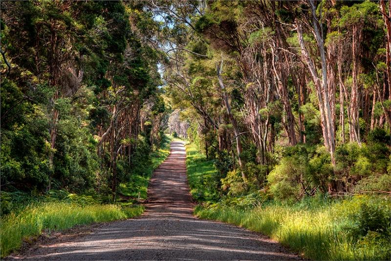 Yarra-Creek-Road-KI0702-16x24 copy