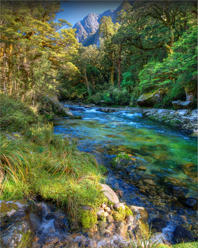 Clinton-River-Milford-Track-NZ0132-16x20 copy