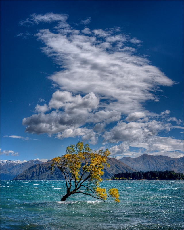 Lake-Wanaka-NZ0226-16x20 copy