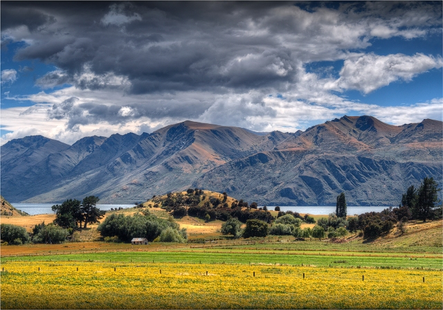 Wanaka-Rural-NZ080-14x20 copy
