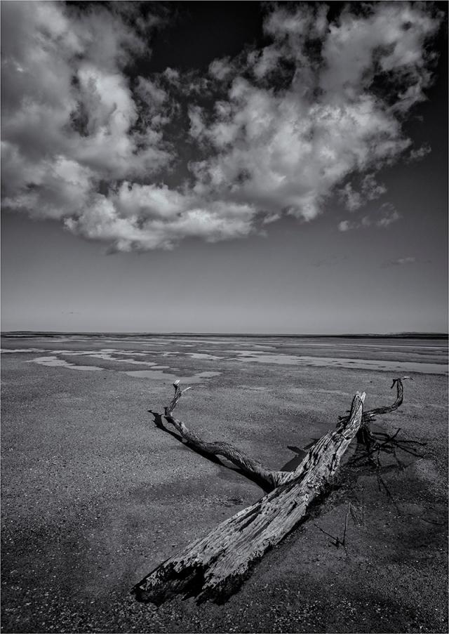 Pat-River-Estuary-FI0M-17x24
