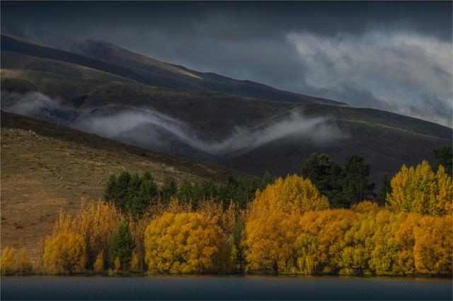 Autumn-Mist-NZ0246-16x24
