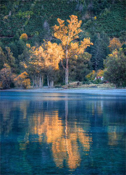 Lake-Wakatipu-Autumn-NZ0283-18x25