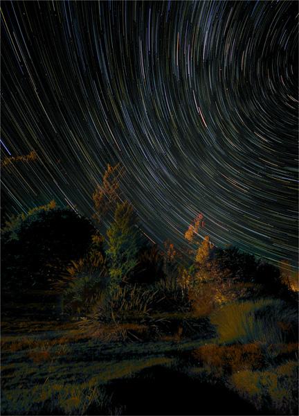 Te-Anau-Startrails-NZ0324-18x25