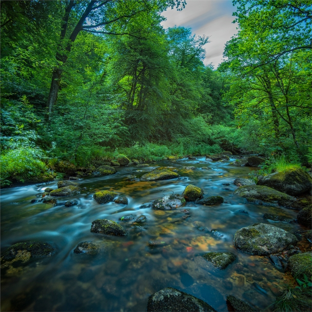 Dart-River-Dartmeet-E025