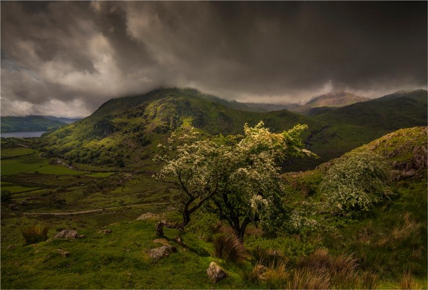 Snowdonia-WLS019-17x25 copy