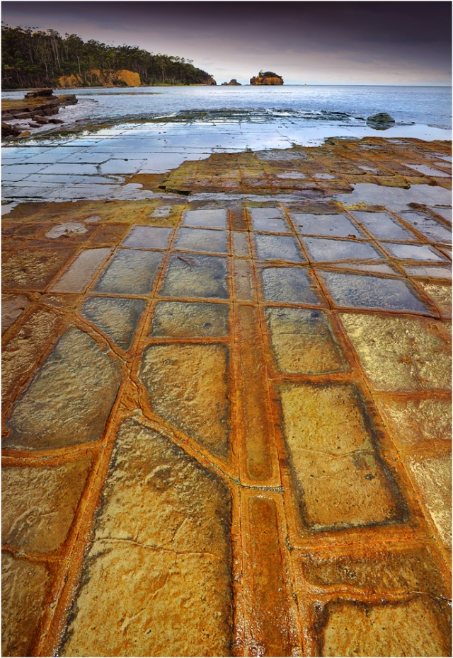 Tessalated-Pavement-Tas097-11x17