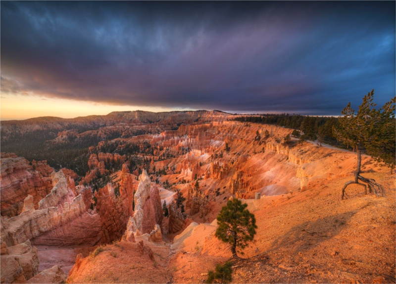 Bryce-Canyon-Dawn-U7703-18x25