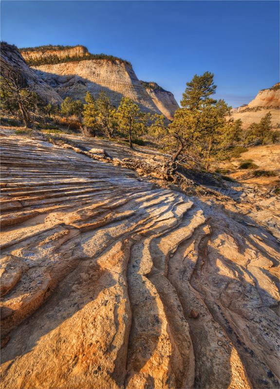 Chequerboard-Mesa-View-Zion-NP-U801-18x25