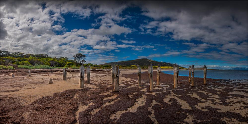 Lillies-Beach-FI0415-20x40