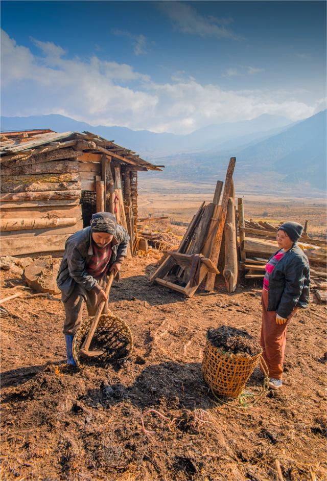 Trongsa-Valley-BHU0111-17x25
