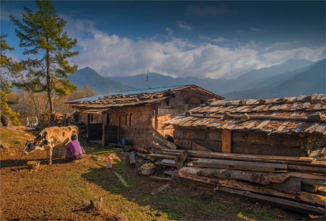 Trongsa-Valley-BHU0114-17x25