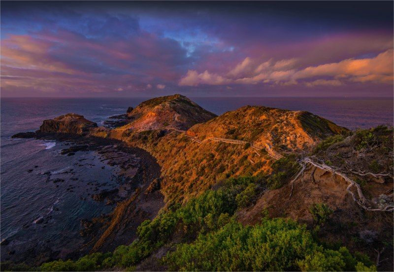 Cape-Schanck-Dawn-V00-18x26