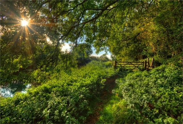 Stour-River-Sunburst-E0-17x25 copy