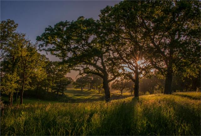 Sunstar-Creech-Rural-E0-17x25 copy