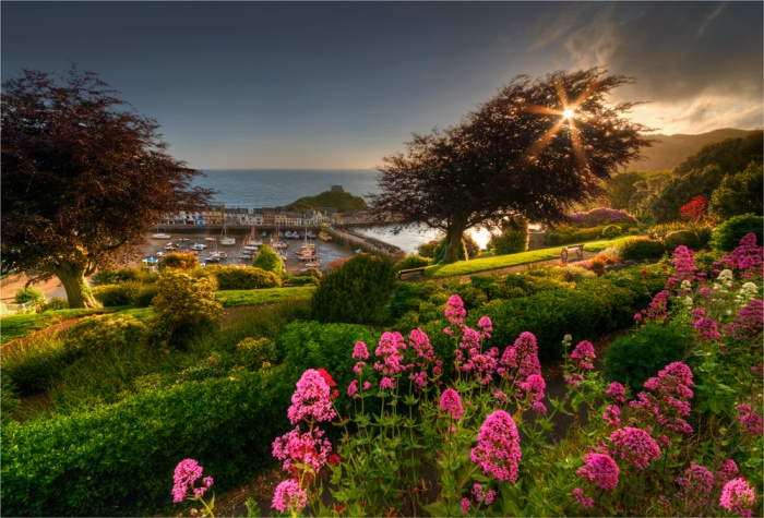 Ilfracombe-Dawn-St-James-Park-E0-17x25
