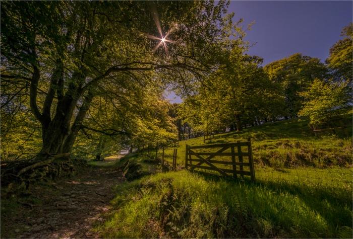Simonsbath-Exmoor-NP-E0-17x25