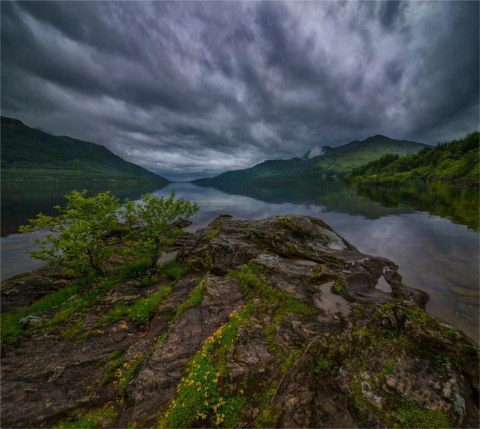 Loch-Lomond-SCT0450-228