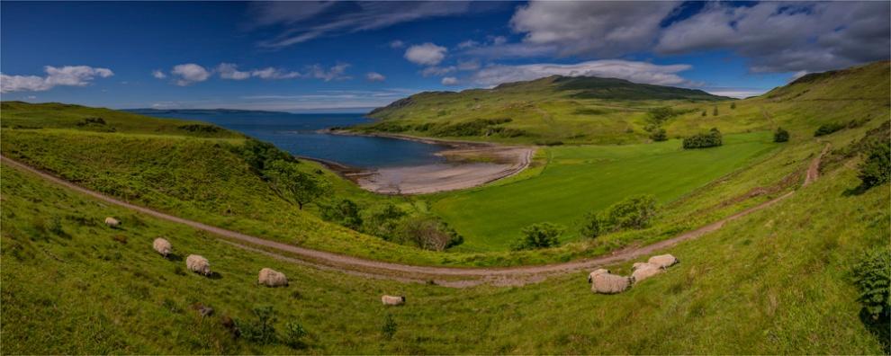 Loch-Sunart-Panorama-SCT0452-20x50