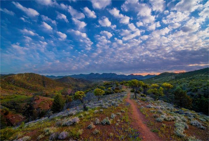 Bunyeroo-Lookout-SA-FR056-17x25