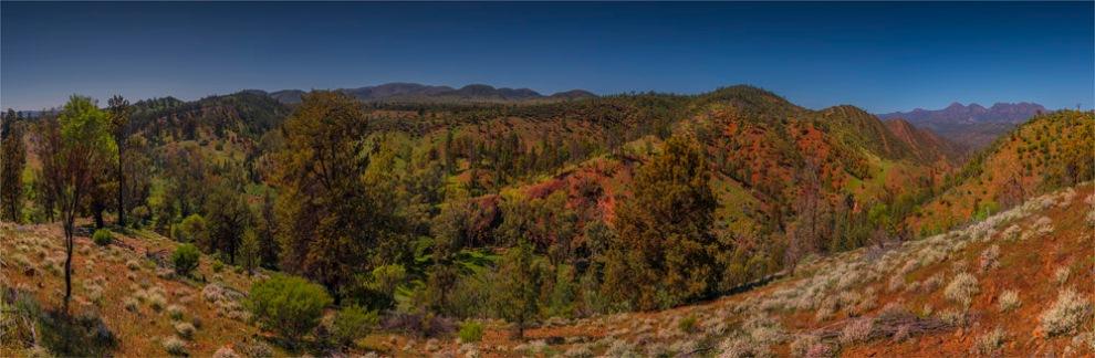 Bunyeroo-Panorama-SA-FR052-18x55