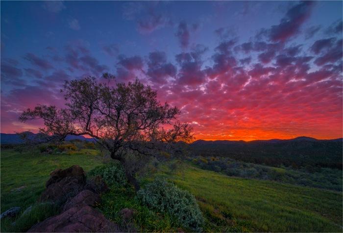 Bunyeroo-Sunset-SA-FR055-17x25