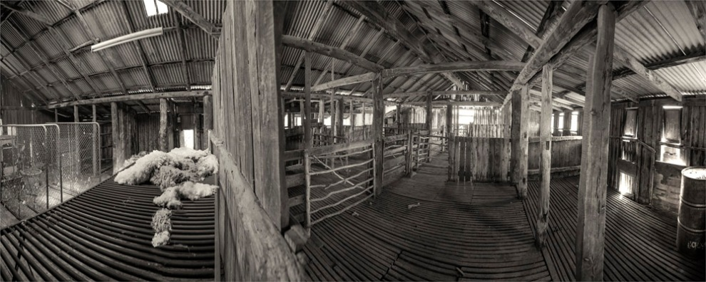 Shearing-Shed-SA-FR025-18x25