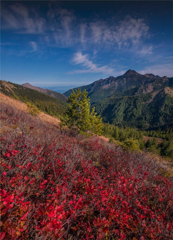Hurricane-Ridge-2015-09-US-WASH159-18x25