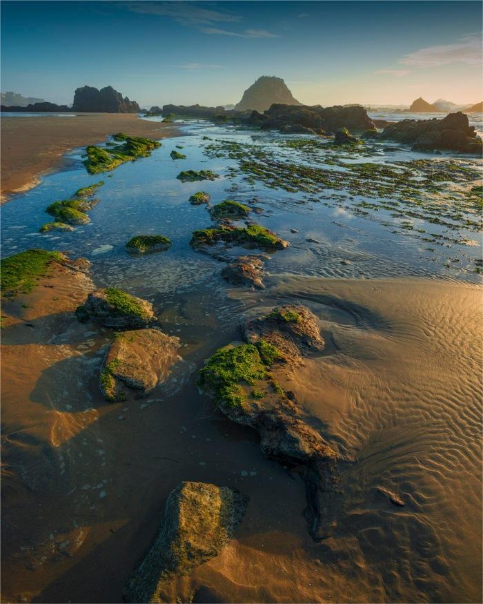 Seal-Rock-Coastline-2015-09-US-ORE164-20x25
