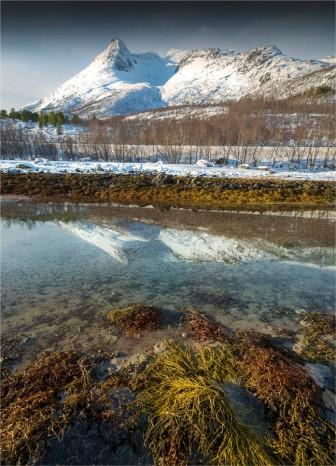 Fiskefjorden-Lofoten-2016-NOR0059-18x25