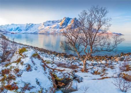 Grotfjord-2016-NOR0172-20x28