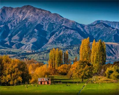 Glendhu-Bay-2016-NZ014-20x25