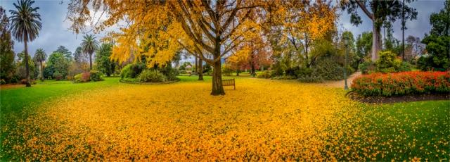 Albury-Botanic-Gardens-VIC-024-18x50