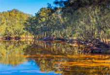 Eurobodella-NP-2016-NSW104-17x25