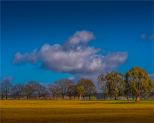 Hesket-Countryside-VIC-014-20x25